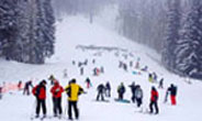 Shimla Holiday Packages